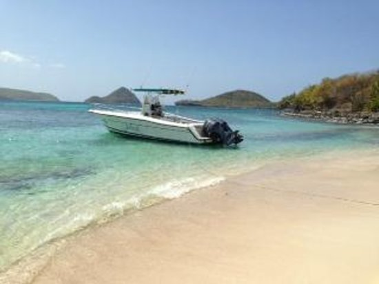 Native Spirit Scuba: sandy island where we went for lunch