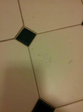 La Quinta Inn San Francisco Airport North : Hmmm, curly hair on the bathroom floor