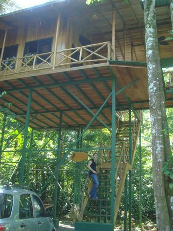 Tree Houses Hotel Costa Rica: Yiguirro from ground