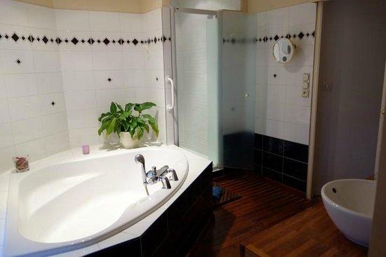 Saint-Martin-d'Ablois, France : bathroom pivoine