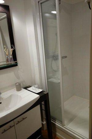 Saint-Martin-d'Ablois, France : bathroom camelia