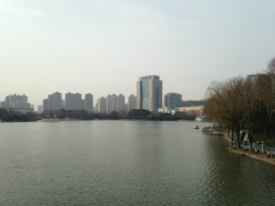 JW Marriott Hotel Shanghai Changfeng Park: View of hotel from park