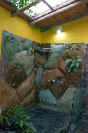 Hotel Mountain Paradise: Bad photo of the water fall stone shower in the room