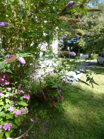 An American In Brittany Bed & Breakfast: côté jardin ....