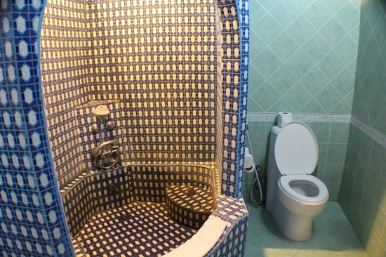 Tembo House  Hotel & Apartments: Shower and toilet.