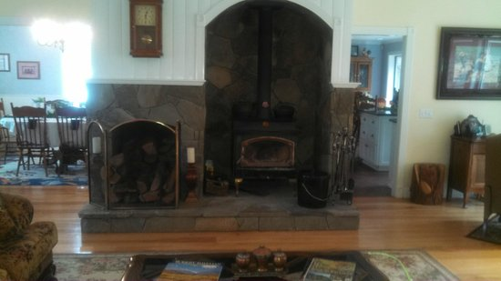 Serendipity Ranch Bed and Breakfast: fireplace