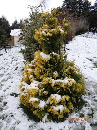 Villa Huinid Resort & Spa: Jardin con nieve