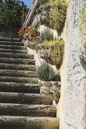 Vizcaya Museum and Gardens: Gardens