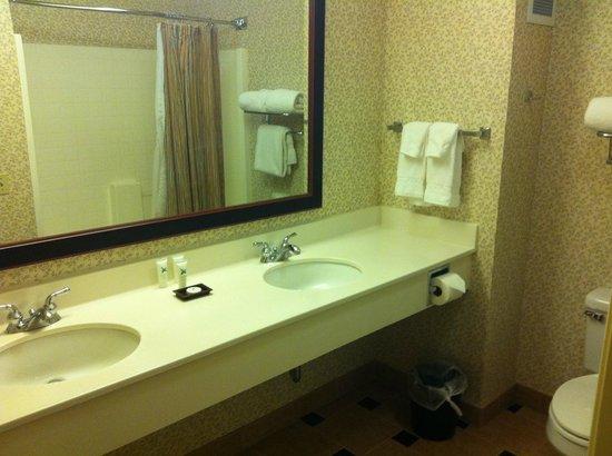 Larkspur Landing Renton: bathroom