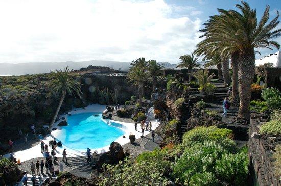 Jameos Del Agua: Pool