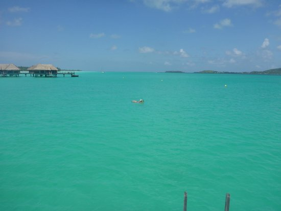 InterContinental Bora Bora Resort & Thalasso Spa : View from Room 230.  Water depth over 10'