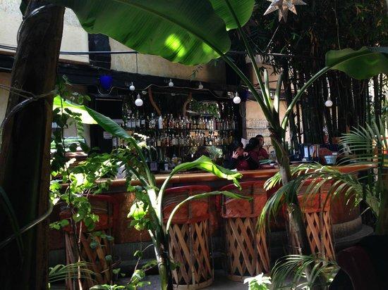 bar de la paloma