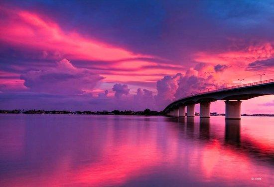 I Kayak Sarasota: Ringling Bridge