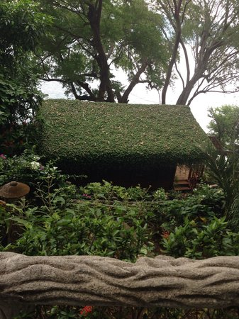 Posada Ecologica la Abuela: Beautiful place