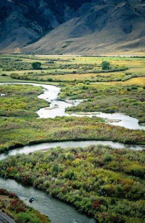 Five Rivers Lodge: Beaverhead River