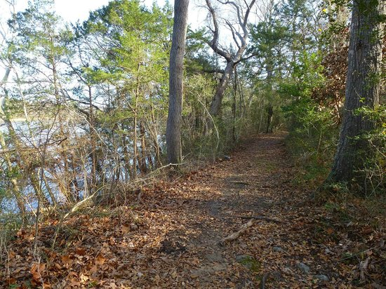 Fort Parker State Park: Baines Creek Trail