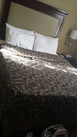 Ramada New York/Eastside: Room 1105