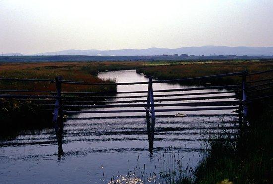 Five Rivers Lodge: Big Sky Country