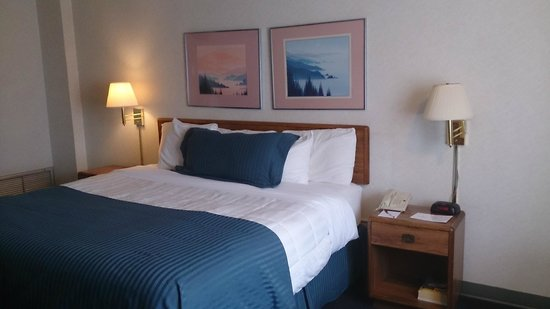 Ramada Milwaukee Downtown: Quarto