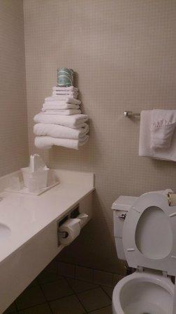 Ramada Milwaukee Downtown: Banheiro