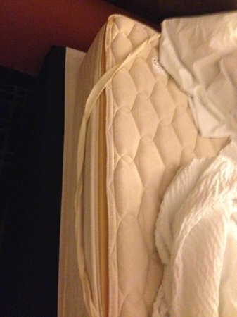 Fairfield Inn & Suites Dallas DFW Airport North/Irving: Ripped mattress