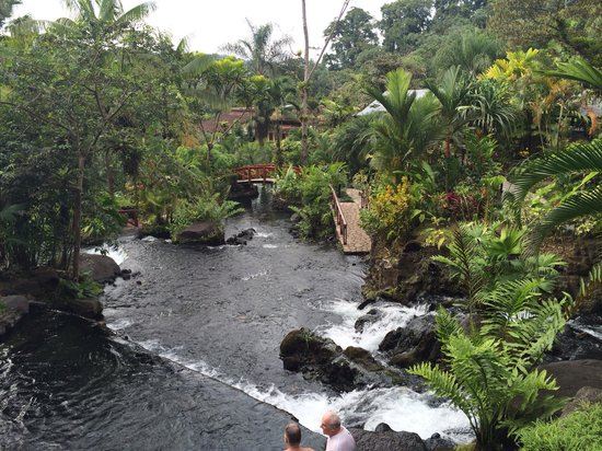 Tabacon Hot Springs: Natural springs