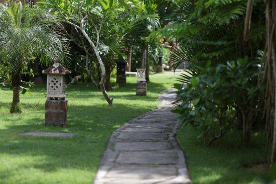Flower Bud Bungalows Balangan: Flower Bud Bungalows - Uluwatu Bali Indonesia - Balangan Beach - path