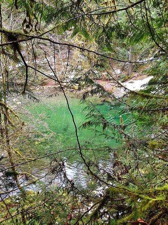 Englishman River Falls Provincial Park: The bottom of the falls as seen through trees