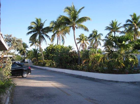 Kingsail Resort Motel: Motel territory