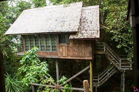 Permai Rainforest Resort: Treehouse