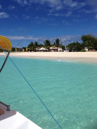 CaptainJo Boat Charter : Top experience from Captainjoboatcharter