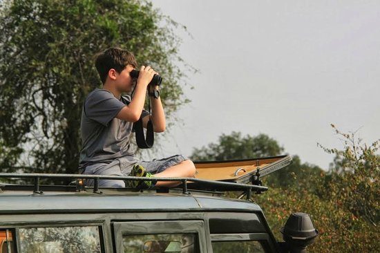 Naboisho Camp, Asilia Africa: On a drive