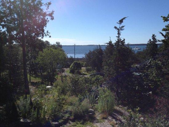 Jubilee Bed & Breakfast : View from terrace towards Lake Ontario
