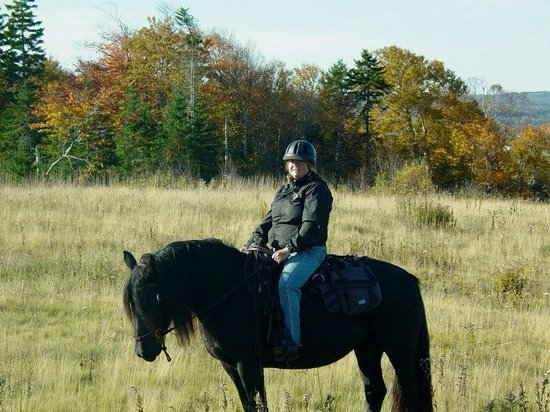 Spirit Reins Ranch - Private Rides: Taking a break to enjoy the view