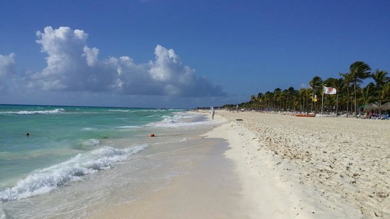 Viva Wyndham Maya : Stranden