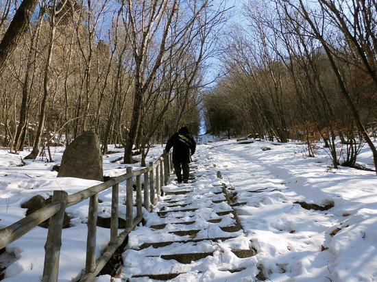 Wunv Mountain : Steps