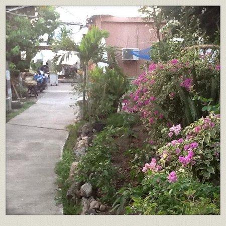 Flower Resort : Flower