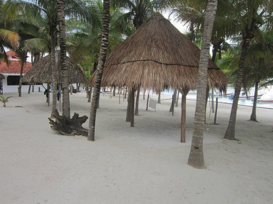 Hotel Akumal Caribe: There were 6 palapas for hotel guests