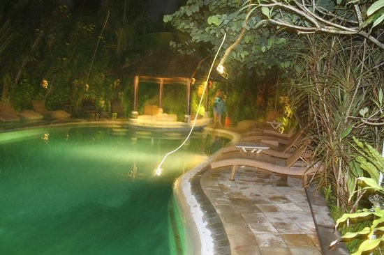 Tonys Villas & Resort: pool at night