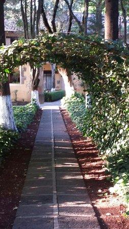 Hacienda San Miguel Regla: Jardines.