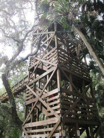 Myakka Canopy Walkway : tower