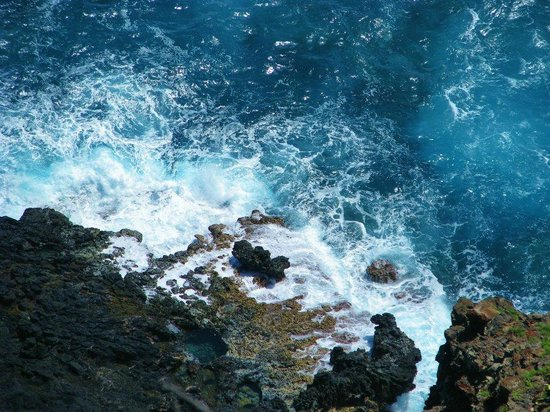Makapuu Lighthouse Trail: Natural pool (in the rocks, not the ocean)