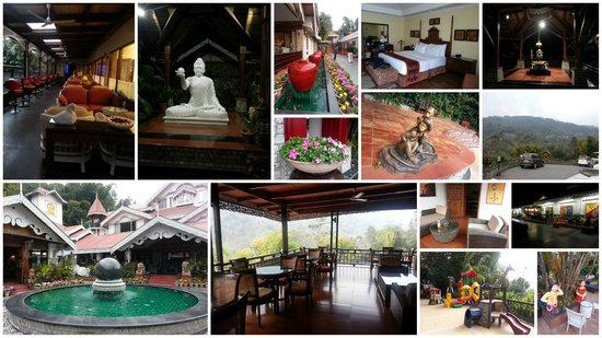 Mayfair Spa Resort & Casino: A collage of the property