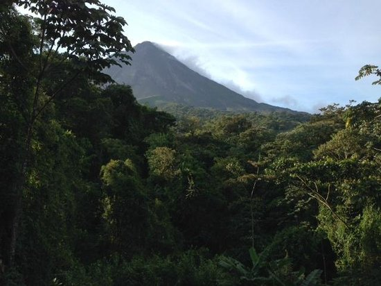 Arenal Kioro Suites & Spa: A Costa Rican jungle just off the balcony.
