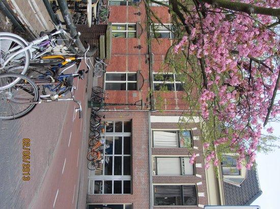 Ibis Leiden Centre : Лейден