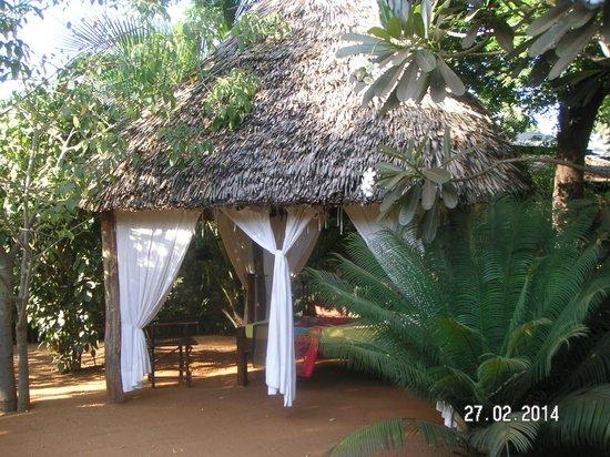 Mimi na Wewe...in Africa!: il giardino