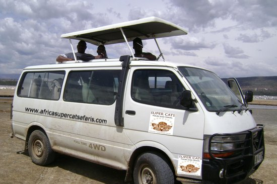 Super Cats Tours and Travel - Private Day Tours : Kenya safari in a van four wheel drive.