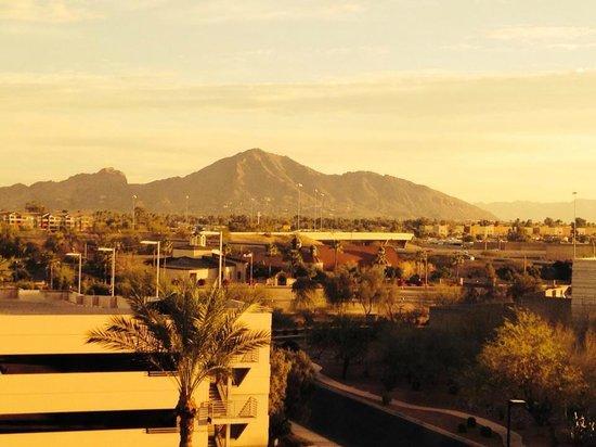 Radisson Hotel Phoenix Airport: View from my room