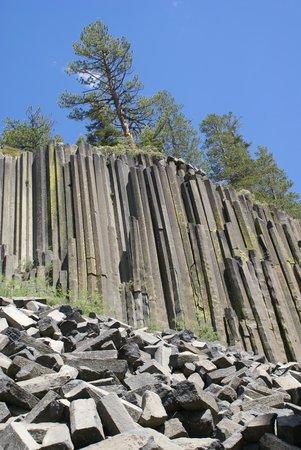 Devils Postpile National Monument: Basalt Cliff 4