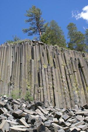 Devils Postpile National Monument: Basalt Cliff 2